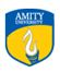 Amity Indian Military College