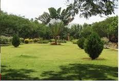 DMS - Pondicherry University Lawn