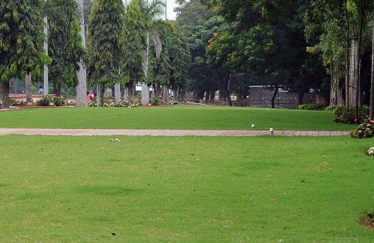 NIT Warangal Garden