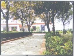 Apeejay Institute Noida Caampus