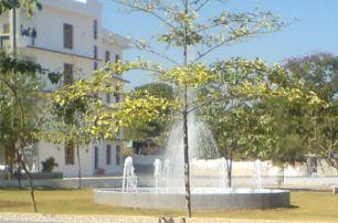 Sardar Vallabhbhai Patel Institute of Technology Campus
