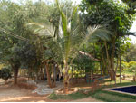 Abhaya College of Nursing Campus