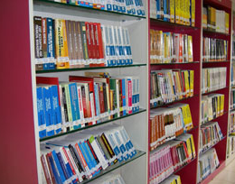 Chetanas Institute Library
