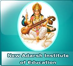 New Adarsh Institute of Education